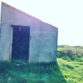 "A concrete hut sits on overgrown grass somewhere wild. The shelter has a steeply sloping roof, slanting down from a sharp apex on the far left. of the image. Bright sunlight coming from directly behind the shelter makes a shadow that reaches towards the front of the picture. To the right of the shelter an uneven edge to the land and the prow of a small boat imply there is ocean beyond. The shelter has a doorway open in the left half of the visible wall. It is dark inside, just about possible to make out rough brickwork, and something like a bunch of drying herbs hanging from the lintel. On the expanse of concrete wall to the right of the doorway, crude chalk writing reads ""you'll know what to do"""